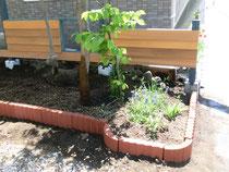 小さな庭!