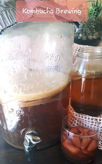 Kombucha Brewing Course