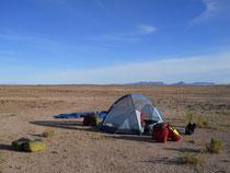 Route de l'Altiplano, quinoa, lamas et volcans
