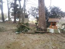 雪解け後の田村神社の境内