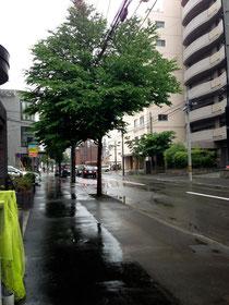 雨の円山裏参道方面
