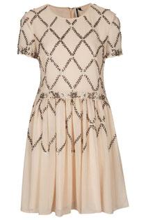 Topshop embellished skater dress