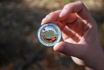 Geocoin Geocaching