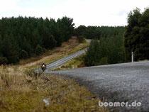 Kurvenspass im Hellyer Gorge Forrest