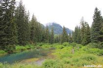 Am Fish Creek/Alaska