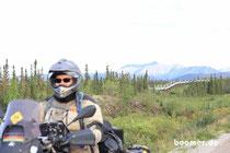immer entlang der Trans-Alaska-Pipeline