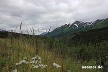 Tal auf der Kenai Halbinsel