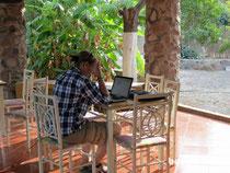 Arbeit unter Palmen