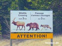 Achtung Wildlife!