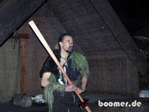 Maori Krieger Warrior Neuseeland New Zealand