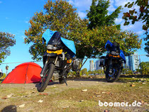 Camp im Moloch der Gold Coast