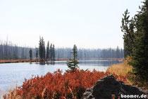 wir lieben diese Herbstfarben überall