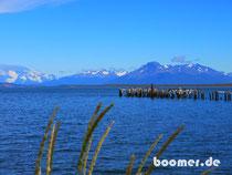 angekommen in Puerto Natales