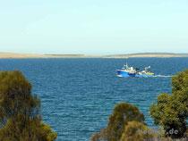 Fischkutter bei Port Lincoln