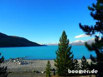 Lake Tekapo Neuseeland New Zealand