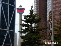 Der Calgary Tower