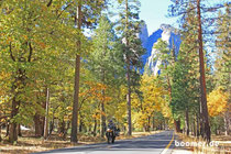 auch im Yosemite ist der Herbst angekommen