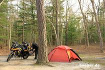 Campen im Wald ist spannender als Washington...