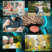 脳の老化防止に!