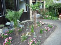 Garten, Pflanzen