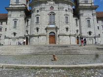 Klara auf dem Klosterplatz