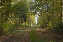 Chemin de randonnée autour du gite pres de Laon