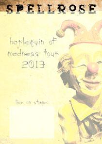 Tourplakat 2013