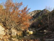 Каньон реки Узунджа