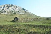Тюремные бараки у шихана Торатау лагерь №016