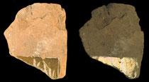 Décor de lustre métallique vu en réflexion diffuse (gauche) et spéculaire (droite), Shahrisabz (XIV-XVème s ap J.C), Musée de Shahrisabz (F.Moncada, 2003)