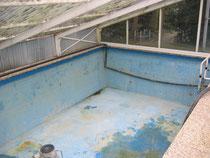 swimspa in alten pool