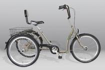Dreirad mit Tiefeneinstieg