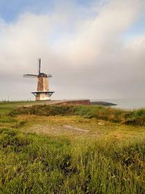 Typisch niederländische Mühle