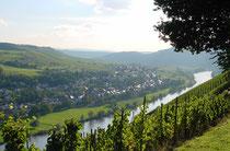Blick aus dem Weinlage Juffer auf den Weinort Brauneberg