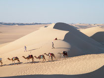 Great Sand Sea. © Dr John Crockett