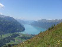 Mountain Man 2011 Lungern Swiss