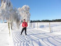 Am Brande Winter 2010