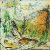"""""""landscape II"""""""