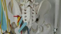奈良 脊柱管狭窄症