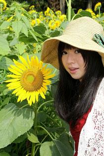 成田ゆめ牧場向日葵の迷路