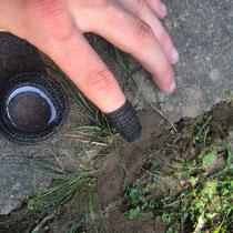 LisaCare - Erste Hilfe bei der Gartenarbeit