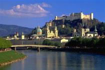 Altstadt mit der Burg