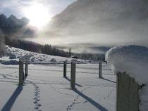 Der zugefrorene Königssee bei Salet
