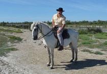 """hélas je n'ai pas de photo de """"Galoubet"""" le cheval borgne de mon adolescence"""