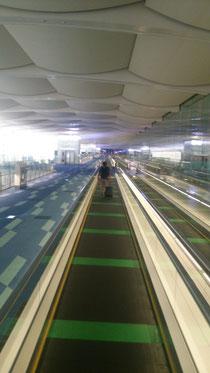 誰もいない羽田空港・・・