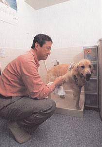犬 足洗い場