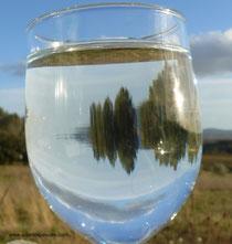 eau source pour pain de petit epeautre bio