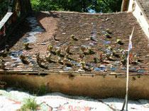 L'un des toits investis par jean linard