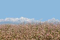 voyage au Népal | Dhulikhel