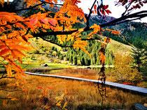Fotos Herbst